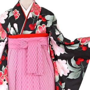 卒業式袴レンタル大きいサイズ3万円以下0093