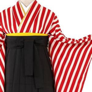 卒業袴レンタル大きいサイズ0195