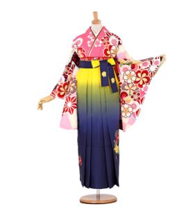 白石麻衣卒業袴レンタル0113