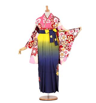 白石麻衣卒業式袴レンタル