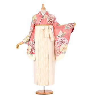 渡辺麻友コラボ卒業式袴レンタル