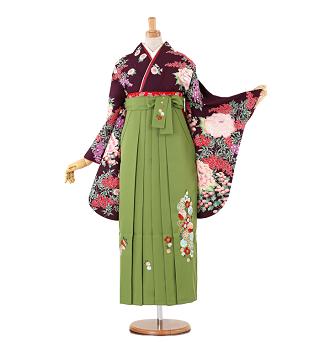 山本美月コラボ卒業式袴レンタル