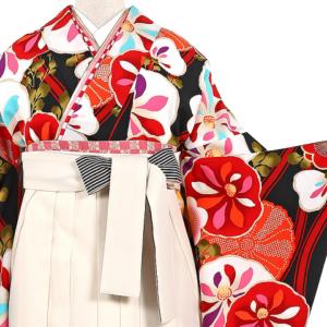JAPAN STYLE卒業袴No.055-0534吹田,卒業式袴レンタル,安い,相場,着物レンタル,振袖,着付け
