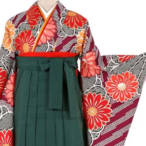 卒業袴レンタル0248-M袴