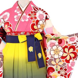 白石麻衣卒業袴レンタル0113L2L